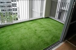Grass For Terrace