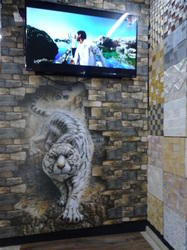 Wall Tiles Tiger Picture