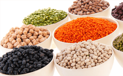 Indian ORGANIC PULSES, Packaging Size: 20KG