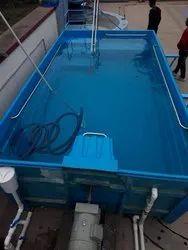 Blue Fibreglass Pool, Height: 2.5 To 5ft