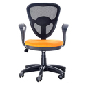 Revolving Mesh Ergonomic Chair Office Chair / Executive Chair