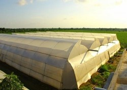 Natural Ventilated Greenhouse