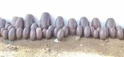 Narmada Brown Lingam