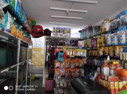 Men Homecare Treatment Facility Pet Home Care Service At Homw, Uttarpradesh