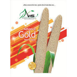 AHS Hybrid Bajra Gold, Packaging Size: 1-50 Kilogram