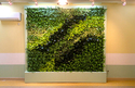 PVC Artificial Vertical Garden