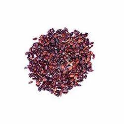 Emblica Officinalis Seed