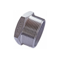 Stainless Steel Socket Weld Plug Fitting 347
