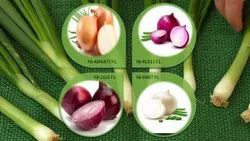 Farmson Biotech Hybrid best quality Onion Seeds, For Direct Showing, Packaging Size: 250 Gm, 500 Gm, 1 Kg, 3 Kg