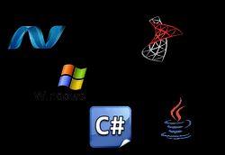 Software Service provider