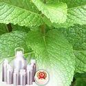 L-Menthol 60% TMC 72%