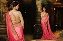 Colorful Designer Sarees