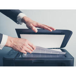 Document Scanning Services, Size: Large