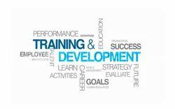 Training Programs Services