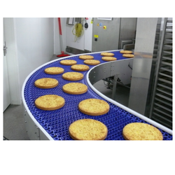 Food Industry Conveyor Belt