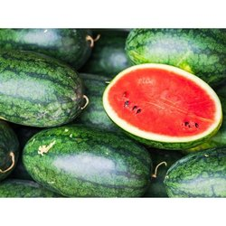 A Grade Fresh Healthy Watermelon, Packaging Type: Carton, Packaging Size: 10 Kg