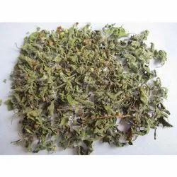 Tulsi Dried Leaves