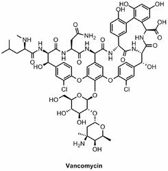 Vancomycin Assay