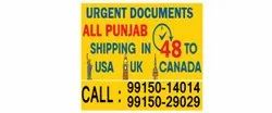 Direct Courier Service To USA Canada From Kapurthala Home Pickup