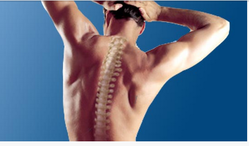 Spine Care Therapy
