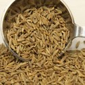 20 Kg Cumin Seeds