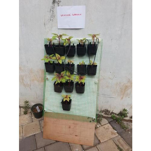 Vertical Garden Maintenance Service