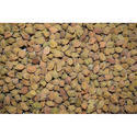 Desi Chana, Packaging Size: 50 Kg, High In Protein