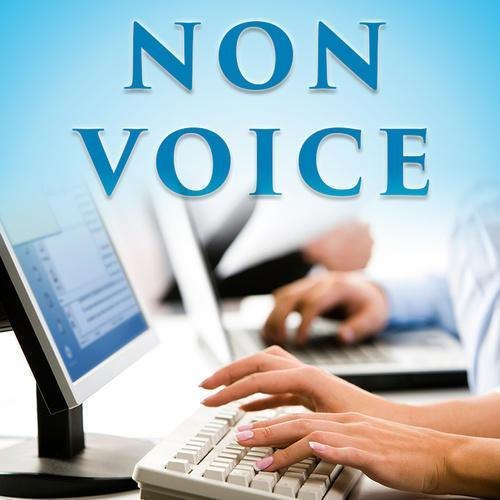 Non-Voice Form Filling Process