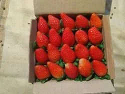 Fresh Strawberry Fruit