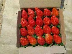 Fresh Strawberry Fruit, Packaging Type: Carton