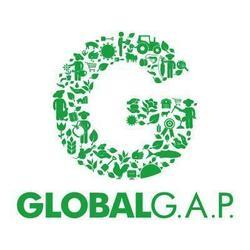 Global GAP Certification