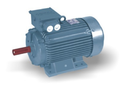 Oswal Thresher Electric Motor