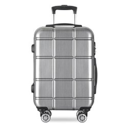 Silver Travel Trolley Bag, Size: 20 Inch(cabin Size)