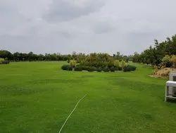 Bajaj White Farm House, Gurgaon Sohna, Size/ Area: 300x198