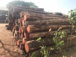 Kumul Wood