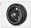 205/55r16 Perfinza Clx1 Tl Tyres
