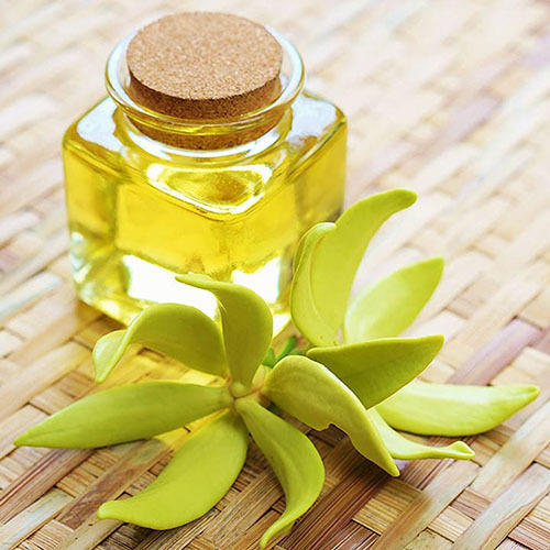 Ylang Ylang Essential Oil For Flavor Amp Fragrances Cananga