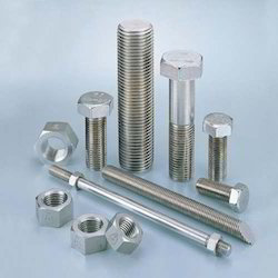 Stainless Steel 304L Nut