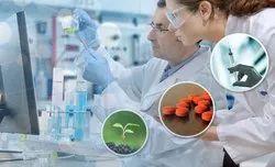 Third Party Pharma Manufacture