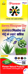 Aloe Vera Giloy Wheatgrass Juice 500 Ml