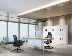 Director/Executive Table