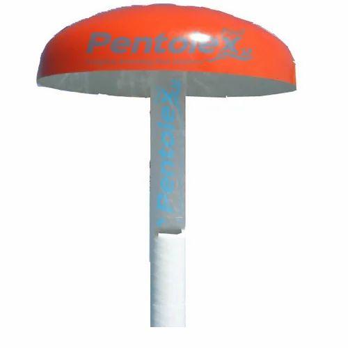 Water Mushroom