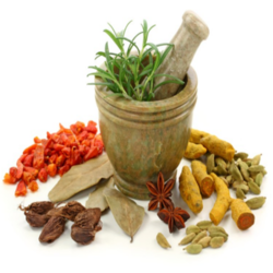 Ayurvedic Medicine, For Personal, Intas Pharmaceuticals Ltd