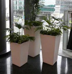 Glory Planters