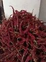 Badghi Red Chillies