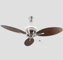 Nickel Havells Florina Ceiling Fan