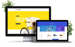E Commerce Website with Inventory Accounting Software