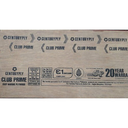 Centuryply Club Prime Plywood Board