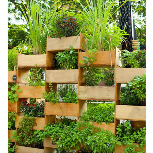 Outdoor Vertical Garden At Rs 600 /square Feet
