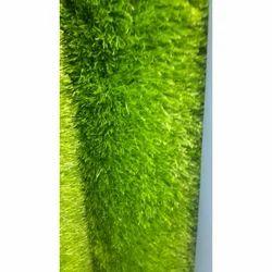 PE And PP Artificial Grass Carpet